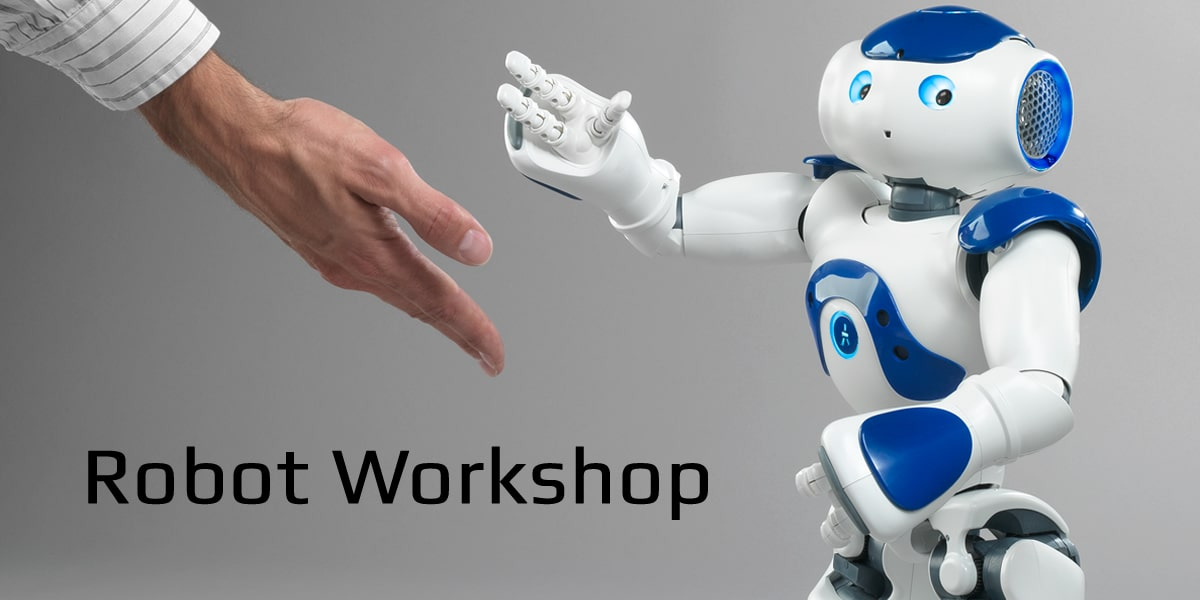 Workshop about robots