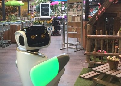 Robot sanbot in retail