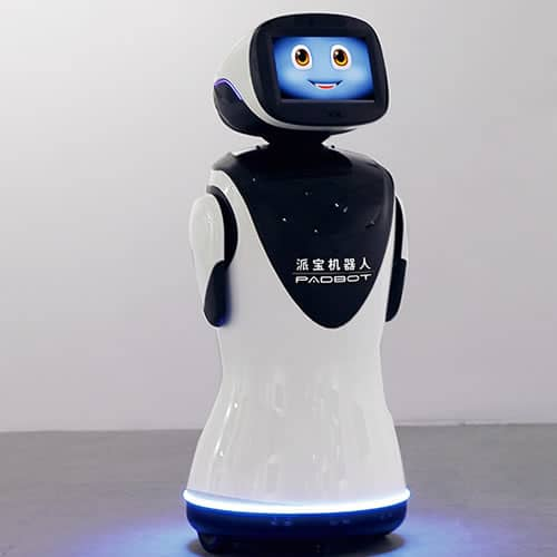 Hire padbot robot